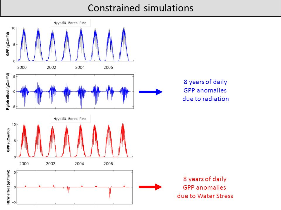 Constrained simulations