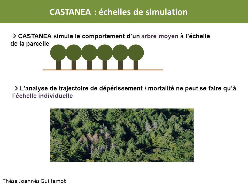 CASTANEA : échelles de simulation