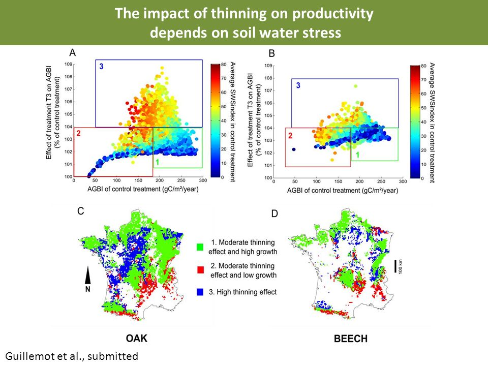 The impact of thinning on productivity depends on soil water stress