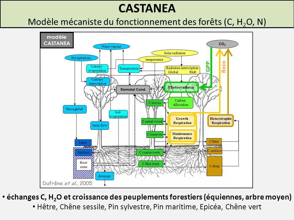CASTANEA Modèle mécaniste du fonctionnement des forêts (C, H2O, N)