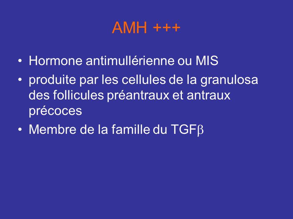 AMH +++ Hormone antimullérienne ou MIS