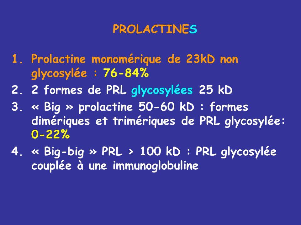 PROLACTINES Prolactine monomérique de 23kD non glycosylée : 76-84% 2 formes de PRL glycosylées 25 kD.