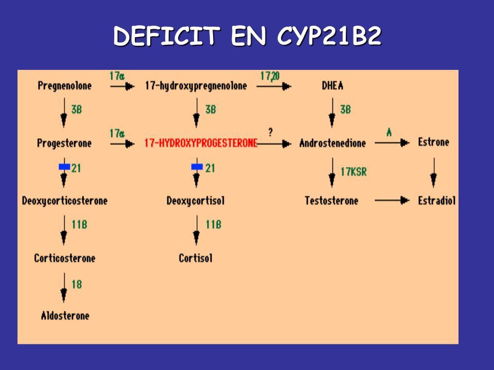 DEFICIT EN CYP21B2