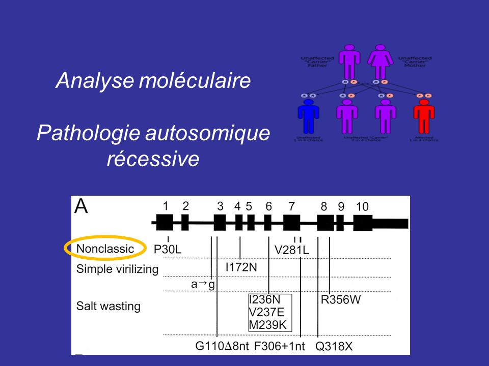 Pathologie autosomique