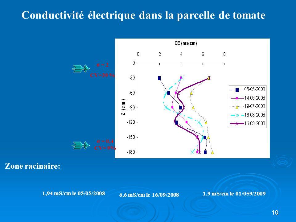 Conductivité électrique dans la parcelle de tomate