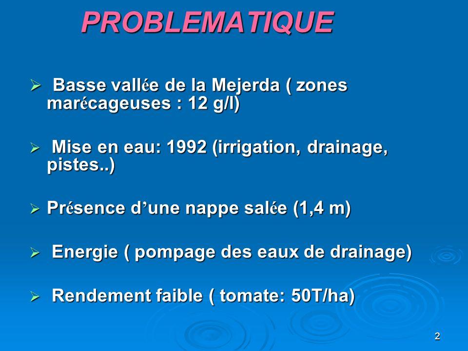 PROBLEMATIQUE Basse vallée de la Mejerda ( zones marécageuses : 12 g/l) Mise en eau: 1992 (irrigation, drainage, pistes..)