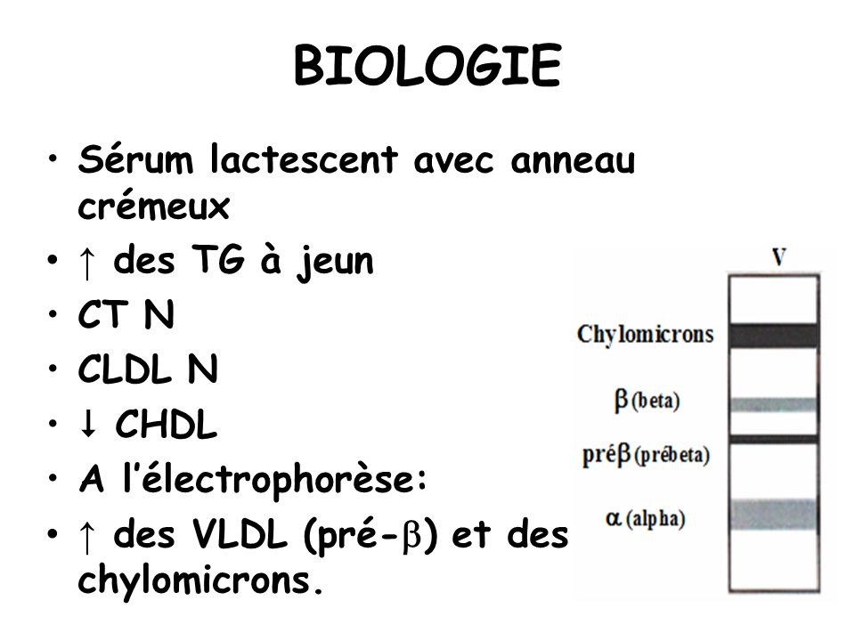 BIOLOGIE Sérum lactescent avec anneau crémeux ↑ des TG à jeun CT N
