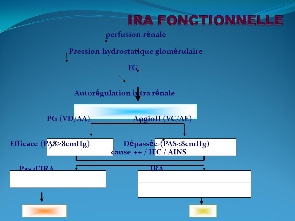 IRA FONCTIONNELLE perfusion rénale Pression hydrostatique glomérulaire