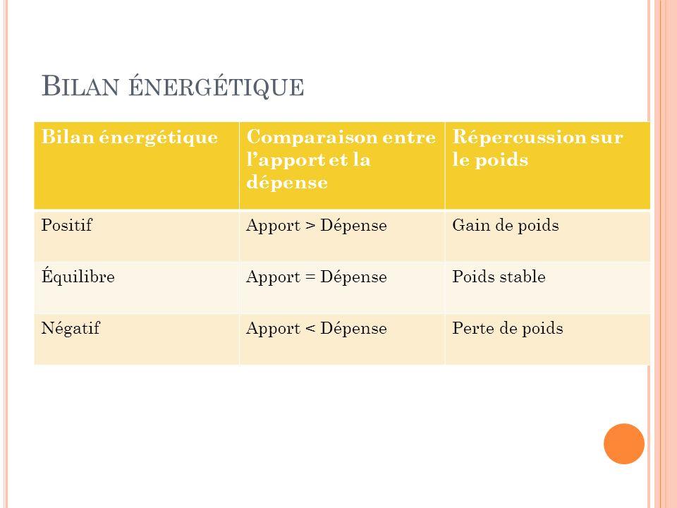 Bilan énergétique Bilan énergétique