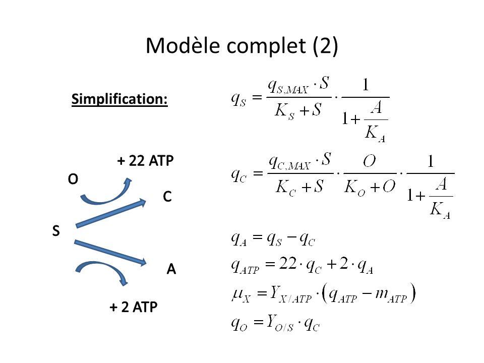 Modèle complet (2) Simplification: S A C + 2 ATP + 22 ATP O