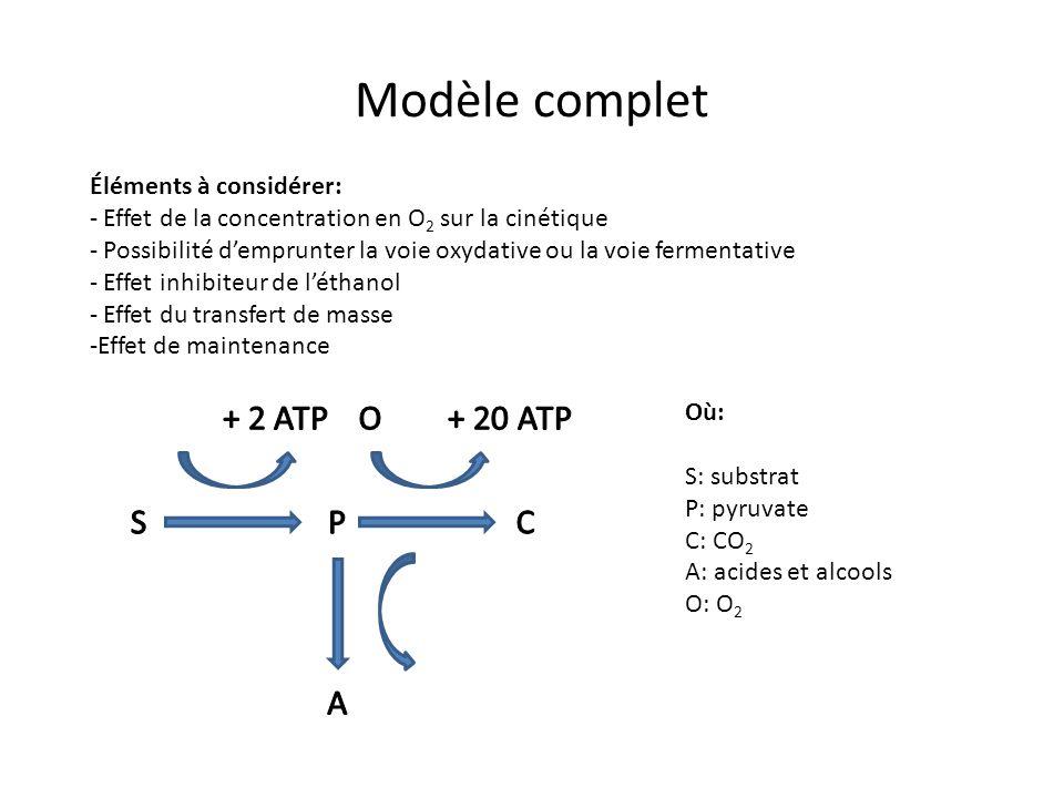 Modèle complet S P A C + 2 ATP + 20 ATP O Éléments à considérer: