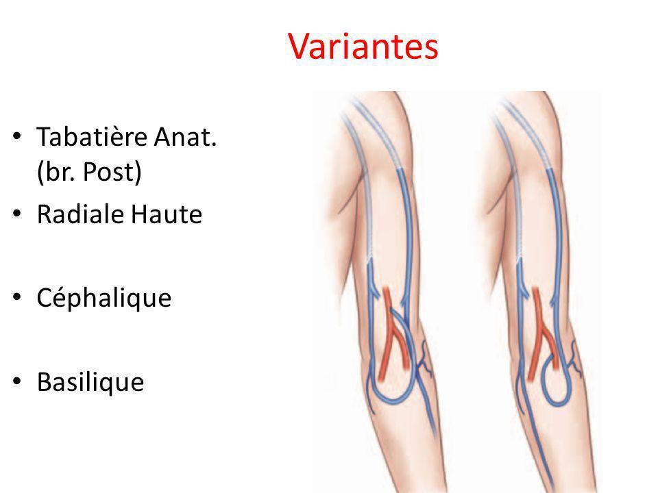 Variantes Tabatière Anat. (br. Post) Radiale Haute Céphalique