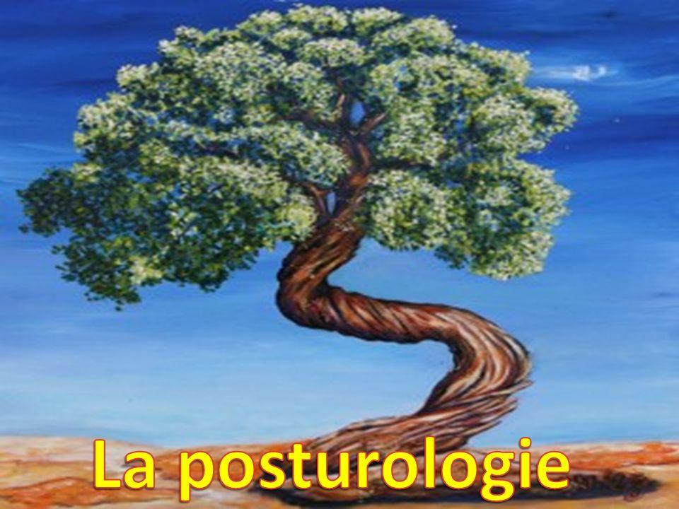 La posturologie La posturologie