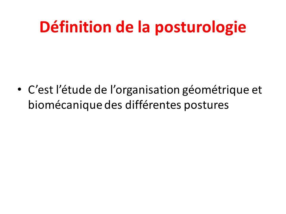 Définition de la posturologie