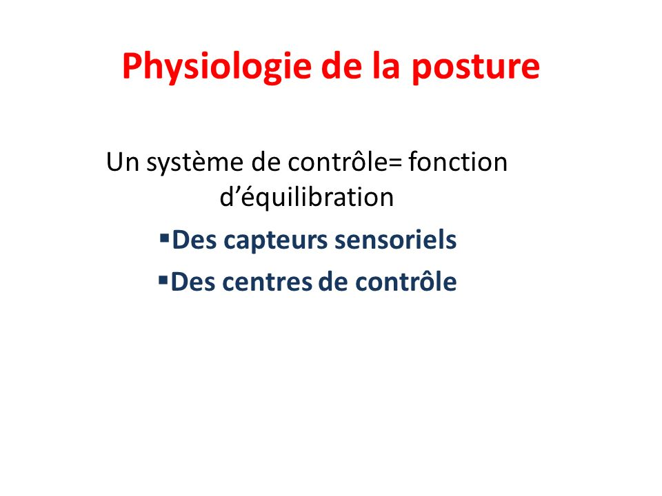 Physiologie de la posture
