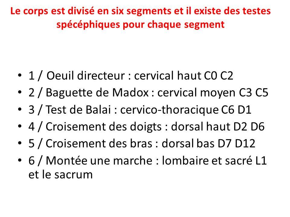 1 / Oeuil directeur : cervical haut C0 C2