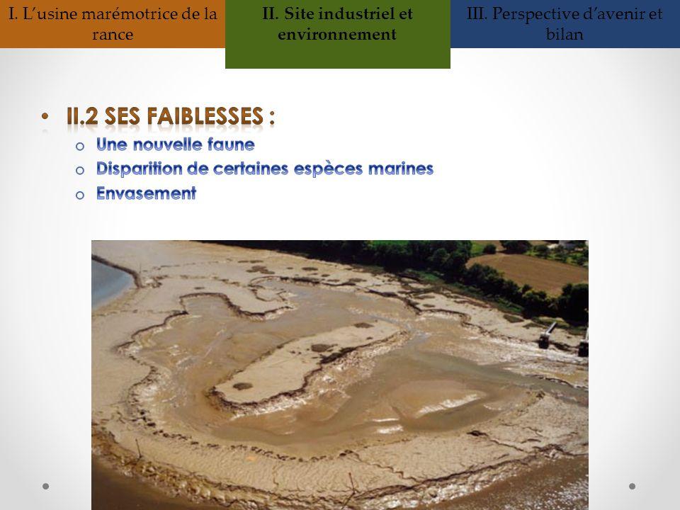 II. Site industriel et environnement