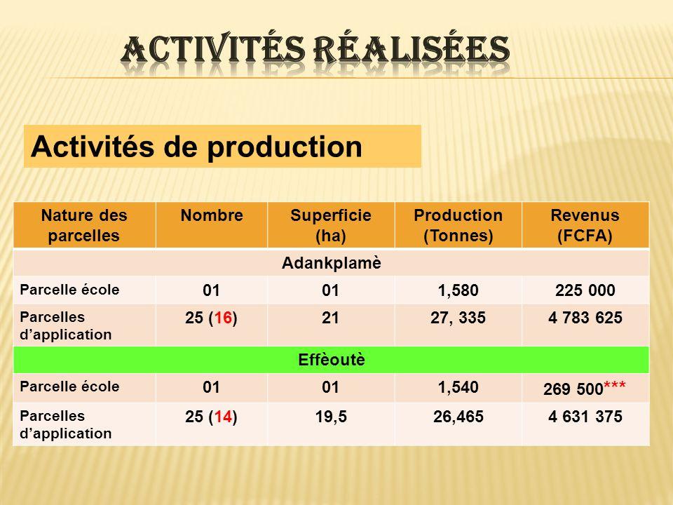 Activités réalisées Activités de production Nature des parcelles