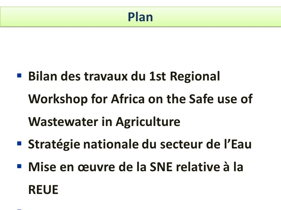 Plan Bilan des travaux du 1st Regional Workshop for Africa on the Safe use of Wastewater in Agriculture.