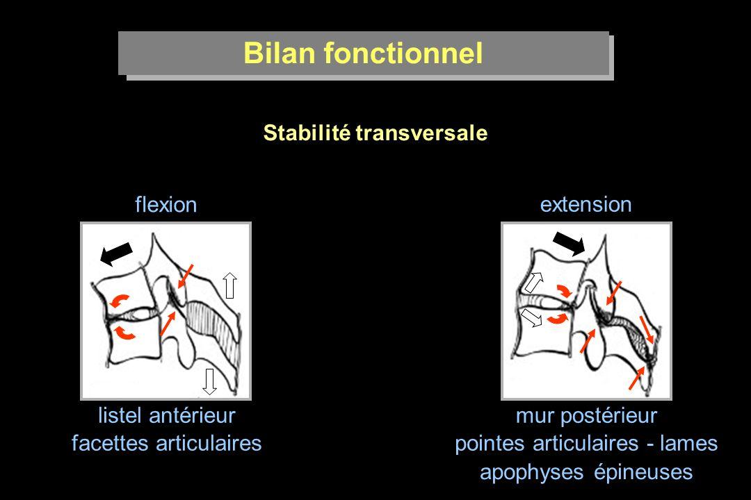 Stabilité transversale