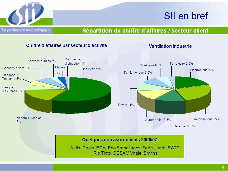 SII en bref Répartition du chiffre d'affaires / secteur client