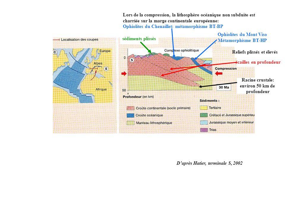 Lors de la compression, la lithosphère océanique non subduite est