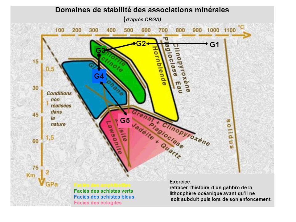 Domaines de stabilité des associations minérales