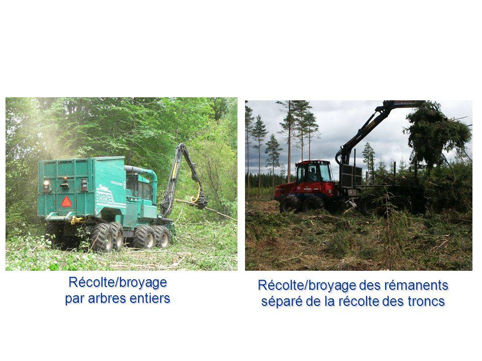 Récolte/broyage des rémanents séparé de la récolte des troncs
