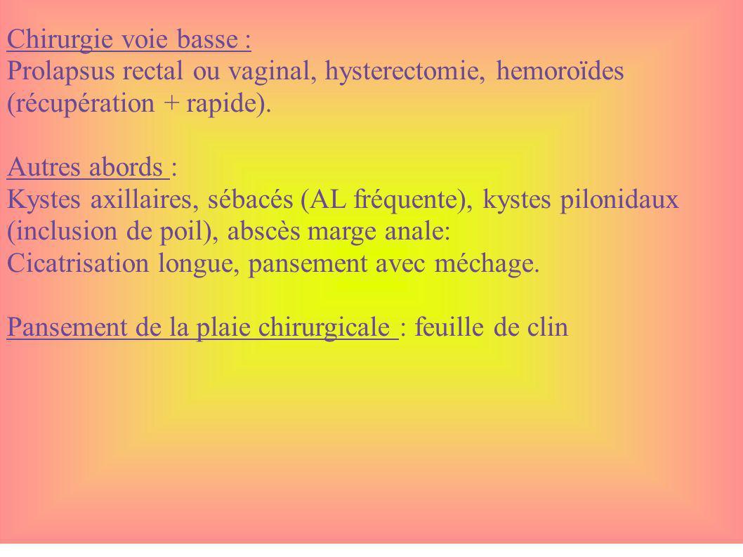 Chirurgie voie basse : Prolapsus rectal ou vaginal, hysterectomie, hemoroïdes (récupération + rapide).
