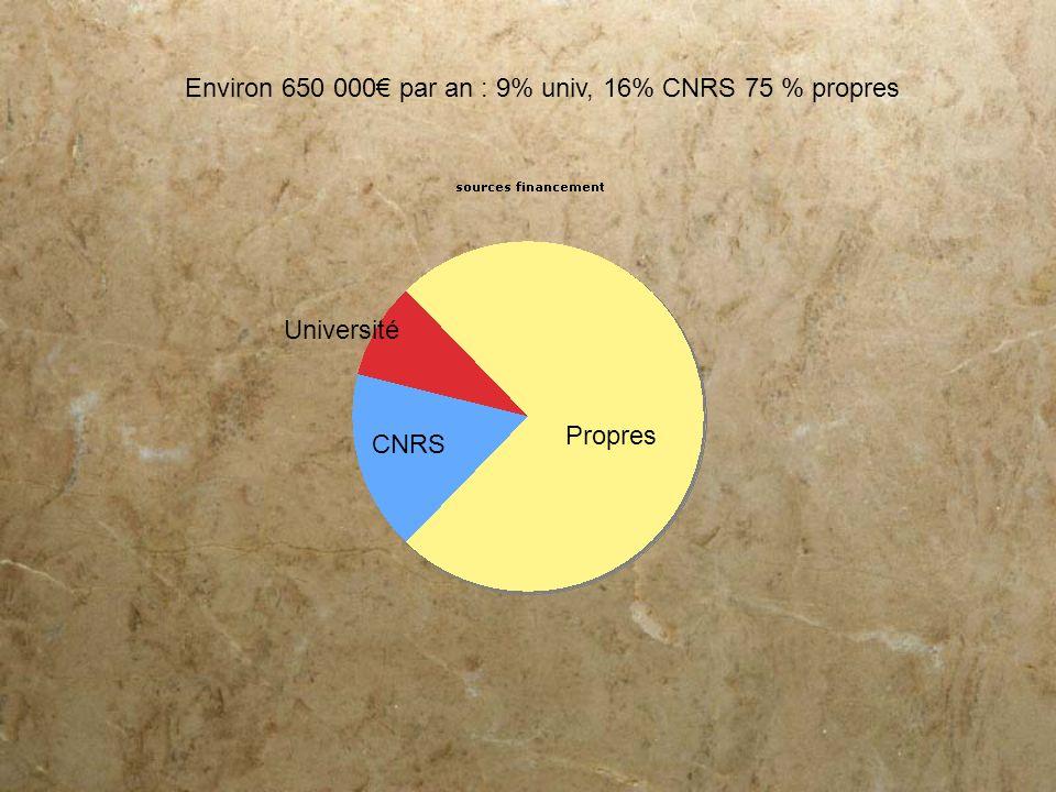 Environ 650 000€ par an : 9% univ, 16% CNRS 75 % propres
