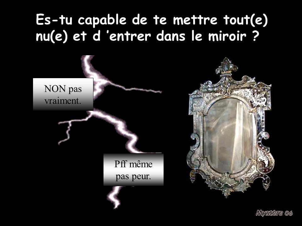Es-tu capable de te mettre tout(e) nu(e) et d 'entrer dans le miroir