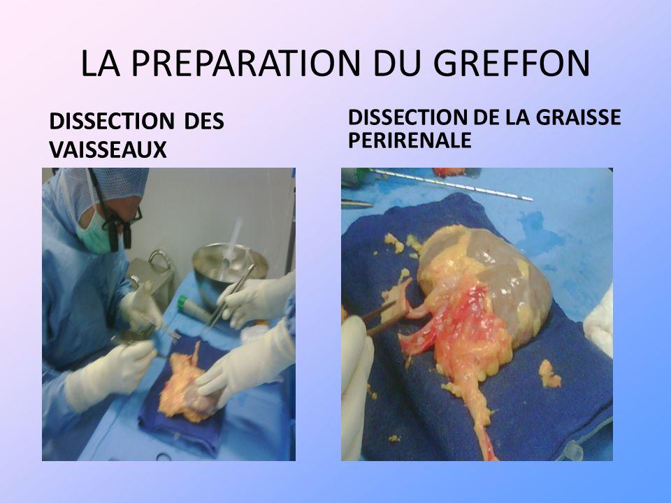 LA PREPARATION DU GREFFON