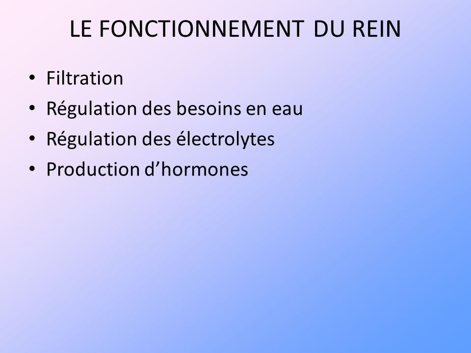 LE FONCTIONNEMENT DU REIN
