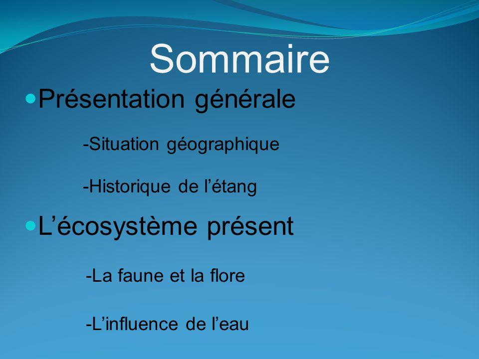 Sommaire -La faune et la flore -L'influence de l'eau