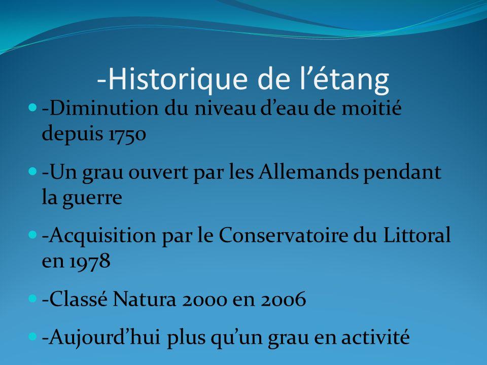 -Historique de l'étang
