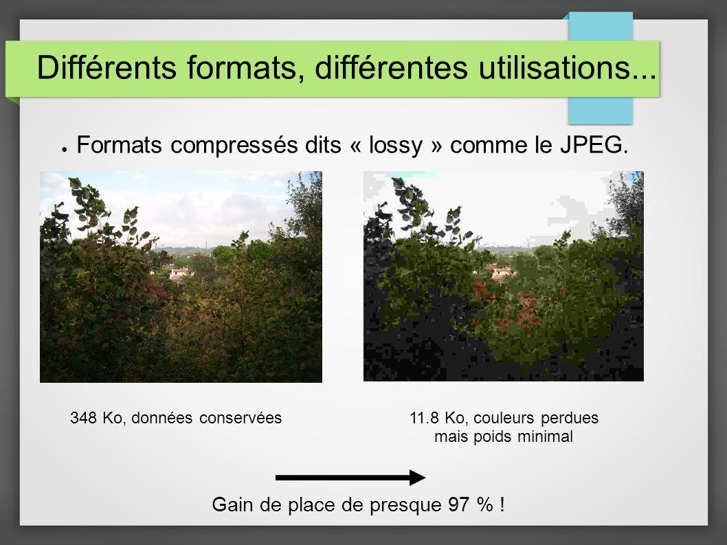 Différents formats, différentes utilisations...