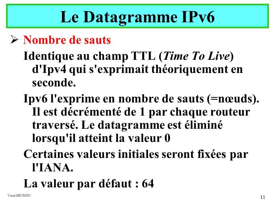 Le Datagramme IPv6 Nombre de sauts