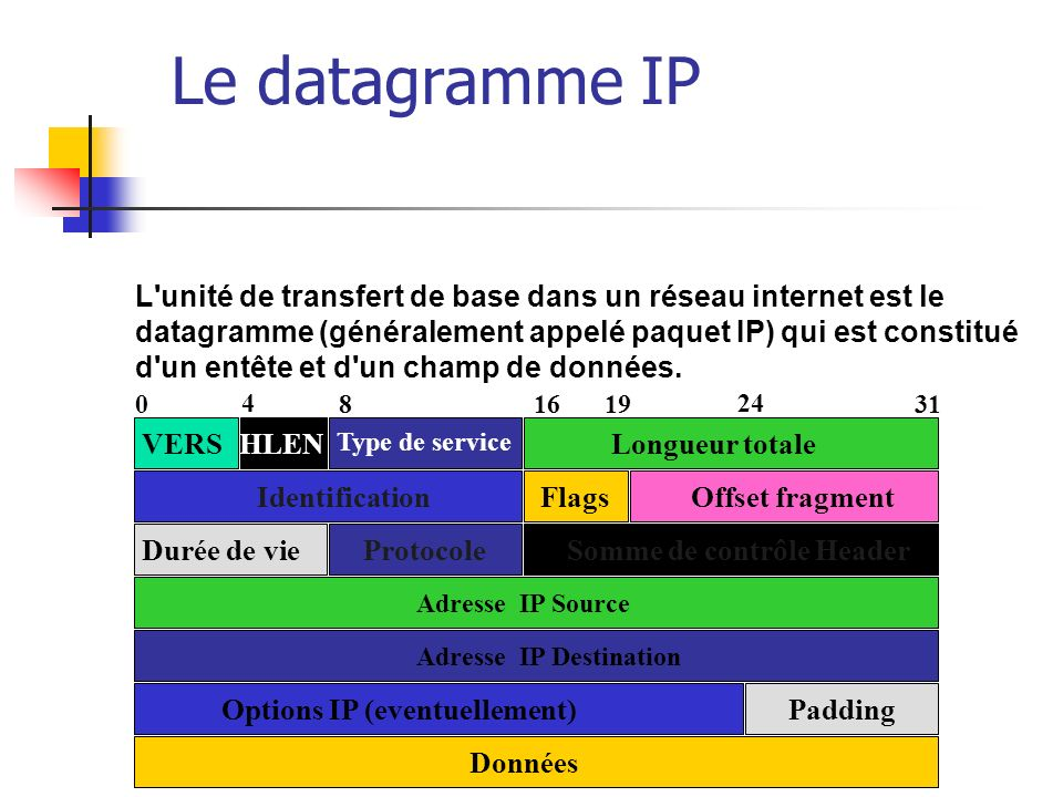 Le datagramme IP