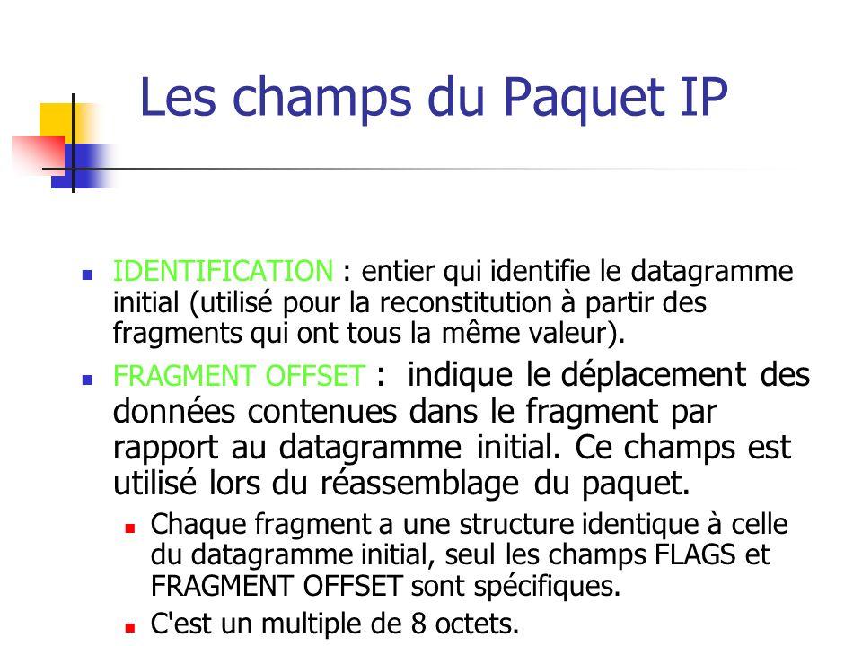 Les champs du Paquet IP