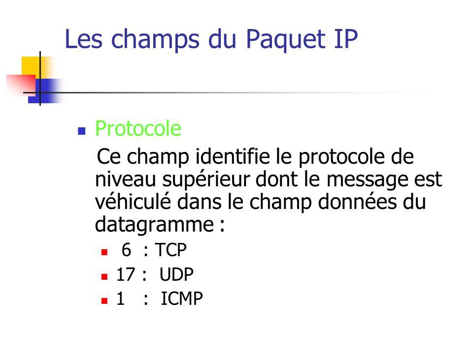 Les champs du Paquet IP Protocole