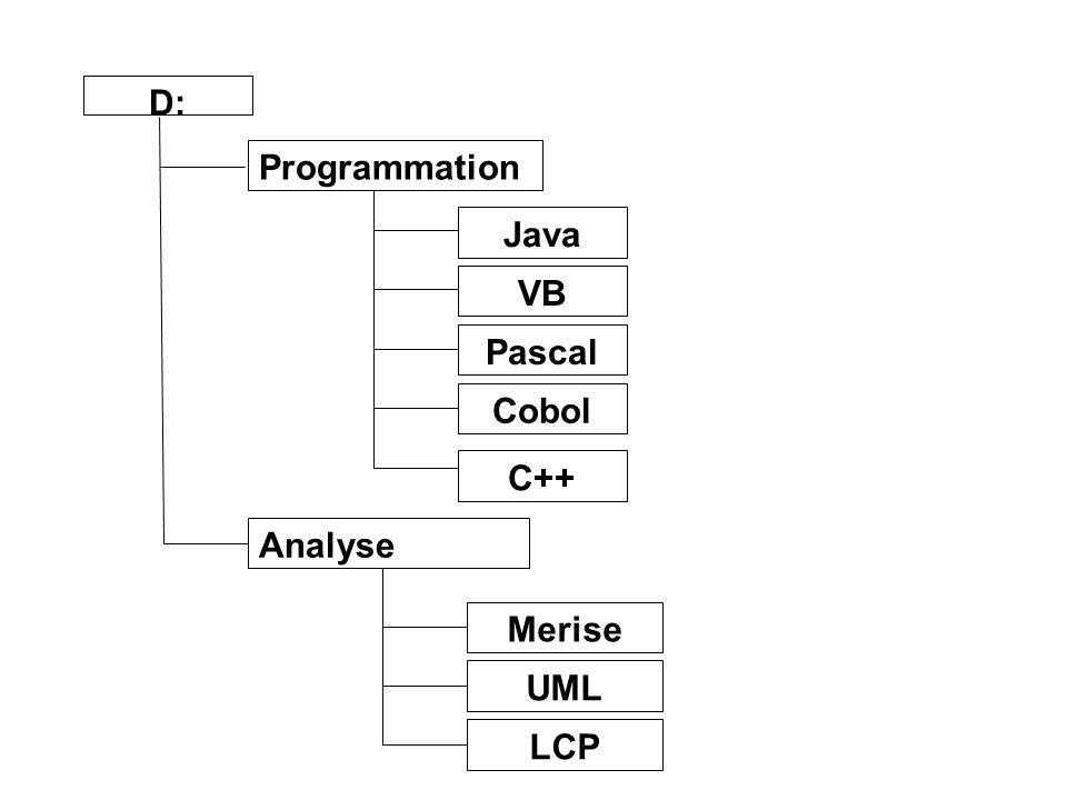 D: Programmation Java VB Pascal Cobol C++ Analyse Merise UML LCP