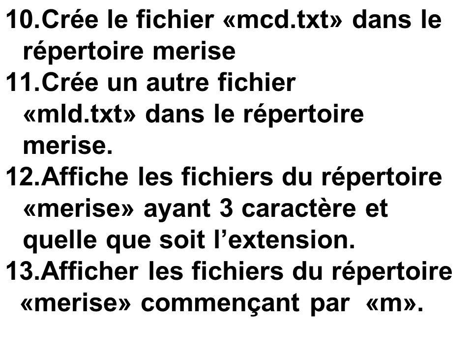 Crée le fichier «mcd.txt» dans le répertoire merise
