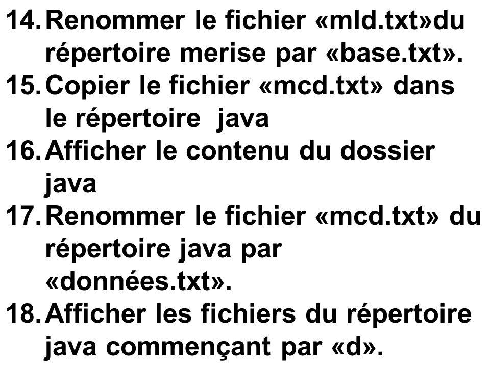 Renommer le fichier «mld.txt»du répertoire merise par «base.txt».