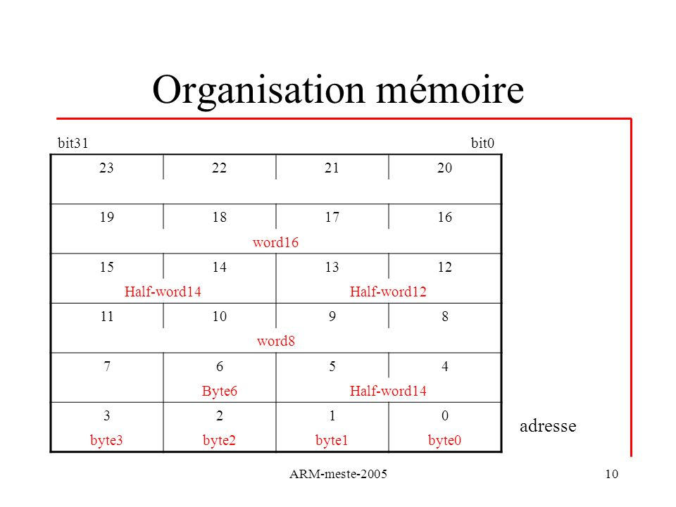 Organisation mémoire adresse bit31 bit0 23 22 21 20 19 18 17 16 word16