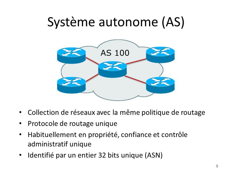 Système autonome (AS) AS 100