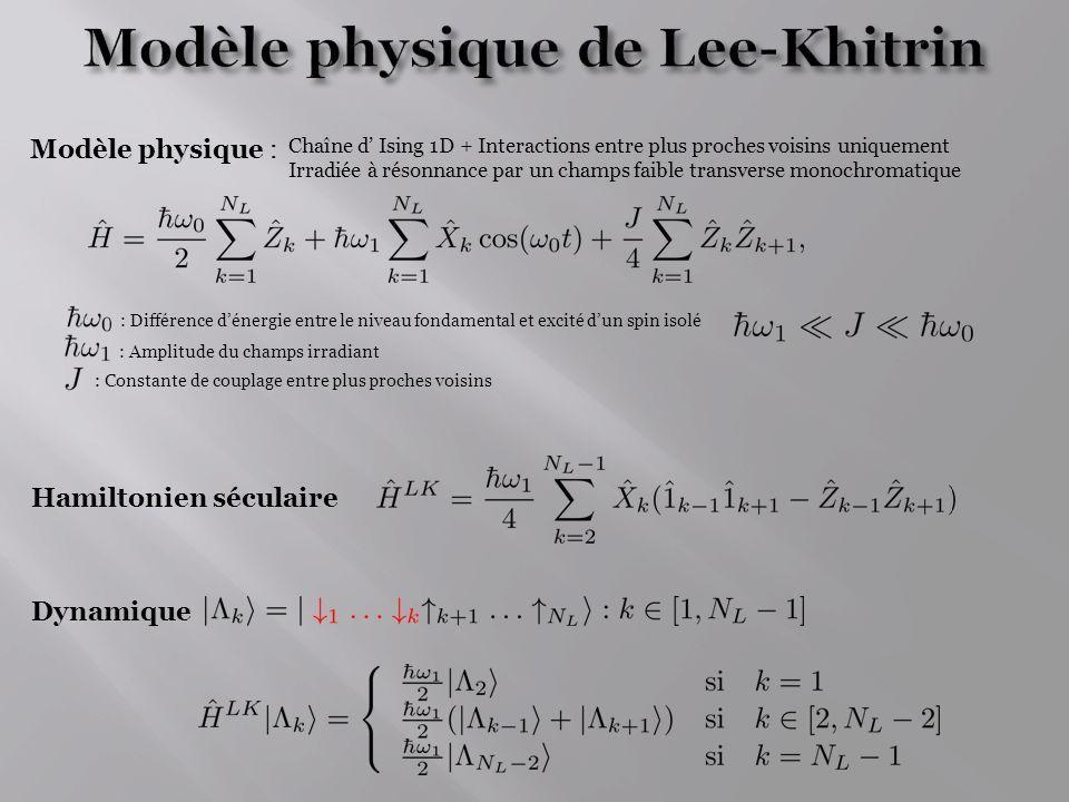 Modèle physique de Lee-Khitrin