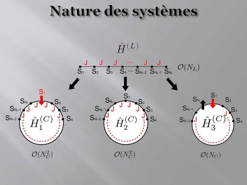 Nature des systèmes - Etude va se faire en deux temps :