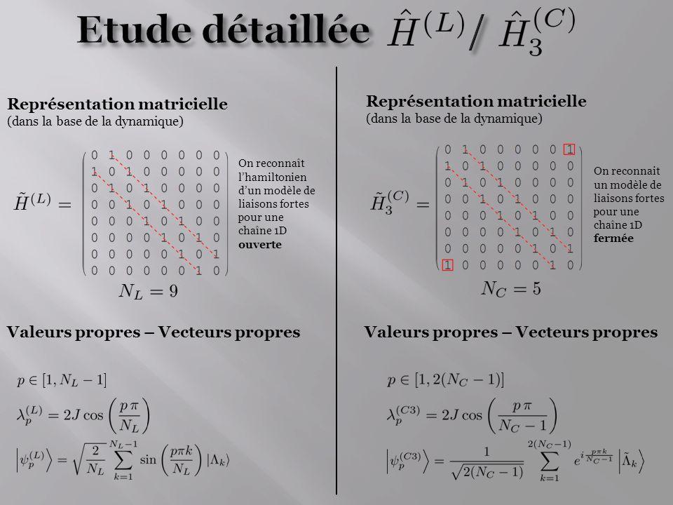 Etude détaillée / Représentation matricielle
