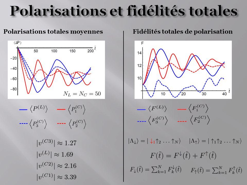 Polarisations et fidélités totales