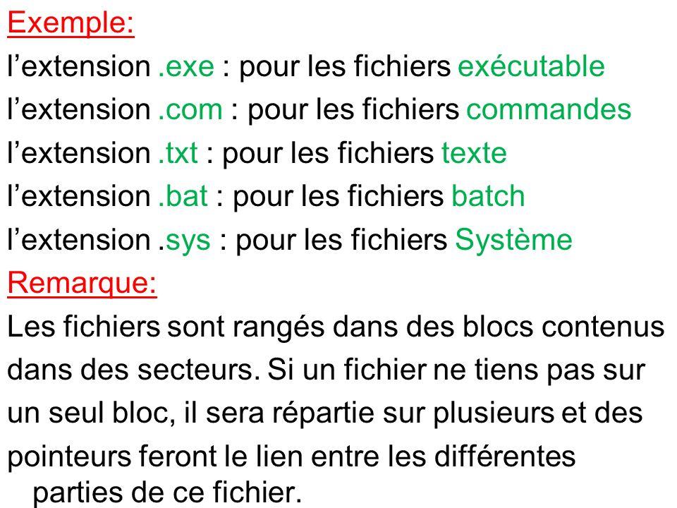 Exemple: l'extension .exe : pour les fichiers exécutable